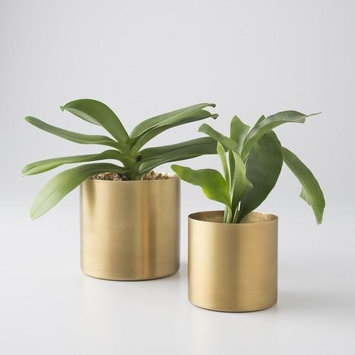 Brass pot for Plants in Matt finish